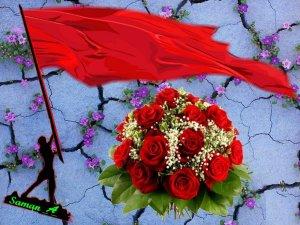 پرچم سرخ گل سرخ